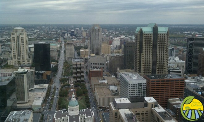 view from St. Louis arch