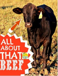 all about that beef
