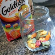 Using goldfish crackers to teach obedience to toddlers, and a fun lesson to go with it! Includes FREE printables!