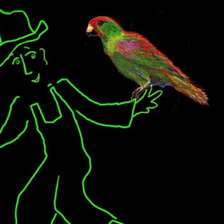 Parrot_3