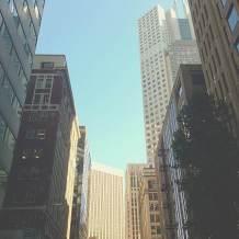 San Francisco City-Scape