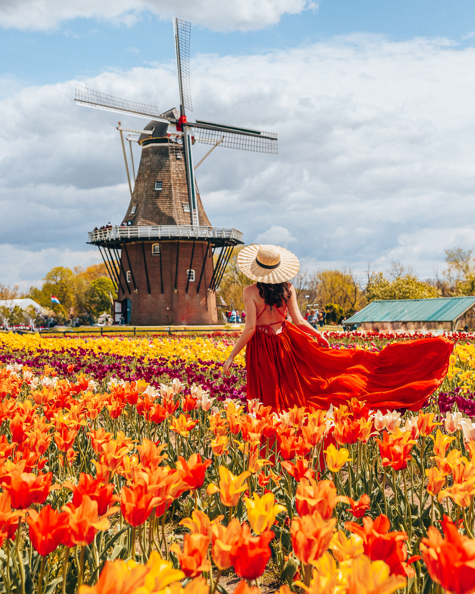 Woman standing in red dress in front of windmill in a tulip field at the Windmill Island Gardens in Holland Michigan