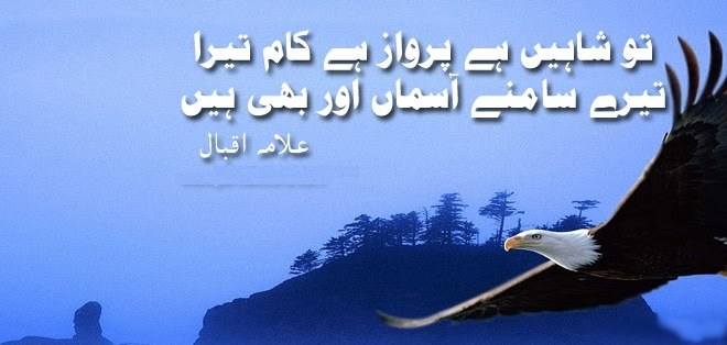 English Essay on Our National Poet (Dr. Allama Iqbal)