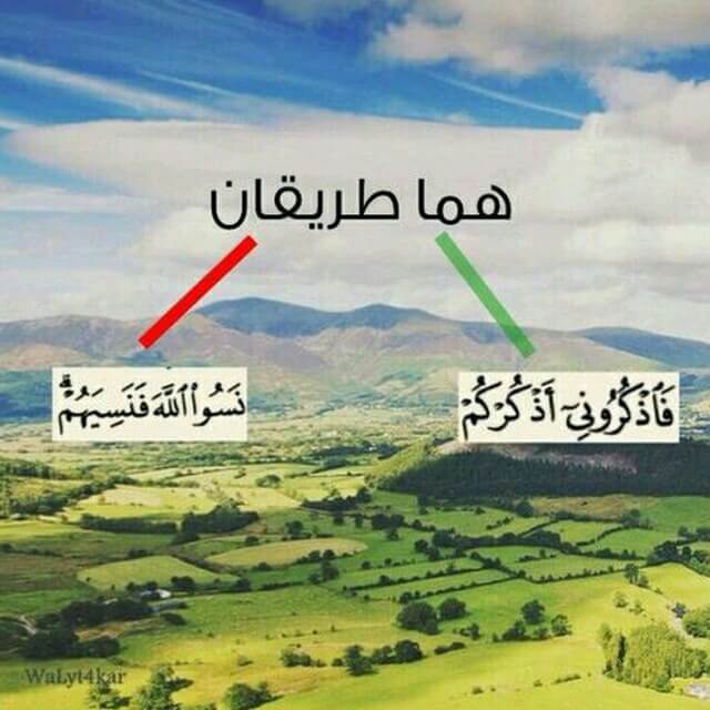 Telegram Group هل صليت اليوم علي محمد Taligram