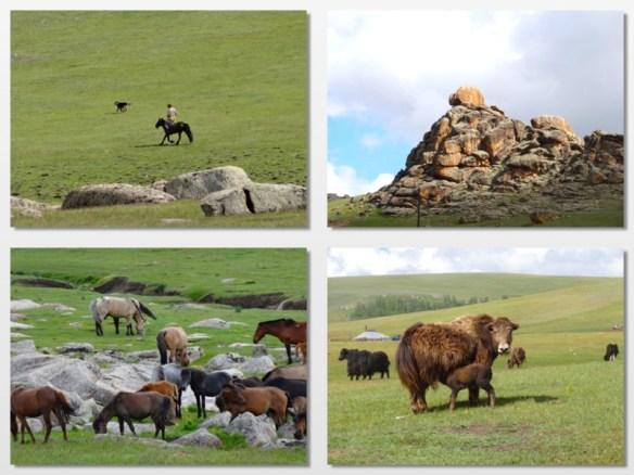 mongolian countryside 1
