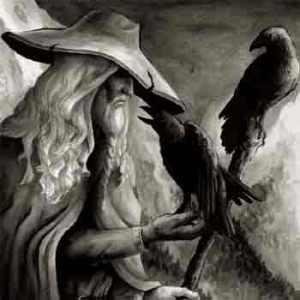 Odin crow