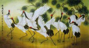 cranes in orient