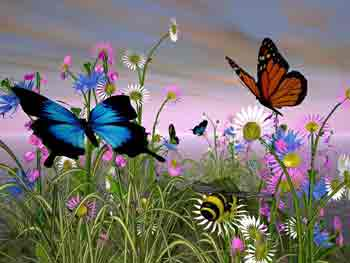 Resultado de imagen de mariposa-hada morada y amarillo
