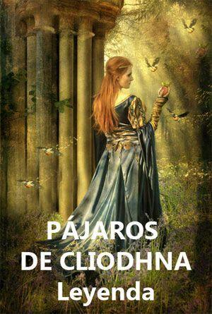 Pájaros mágicos celtas de Cliodhna leyenda
