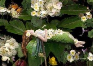 hada del jardín rodeada de florres