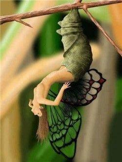 hada mariposa saliendo de la larva