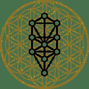 Talismanes Amuletos Y Símbolos Flor De La Vida Significado