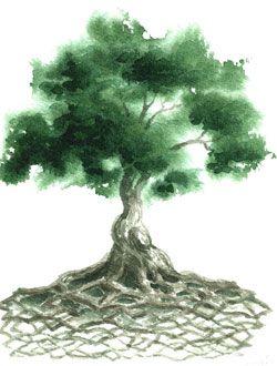 árbol-celta-de-la-vida