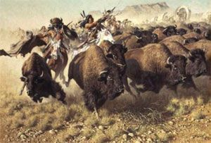 caza del búfalo. Nativos america
