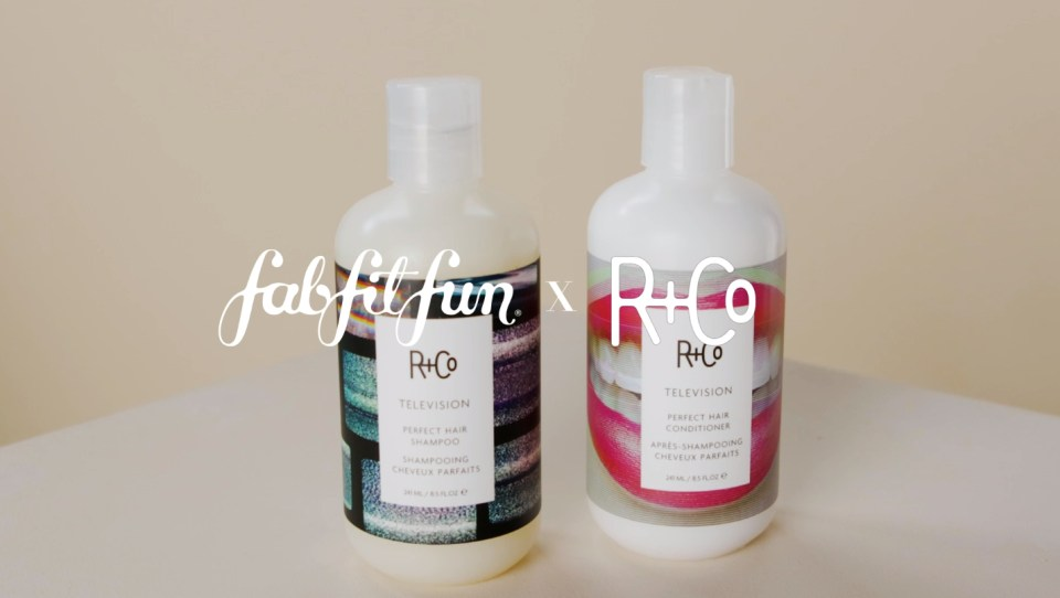 FabFitFun Winter 2019 Box Spoilers + Promo Code | R+Co TELEVISION Perfect Hair Shampoo + Conditioner