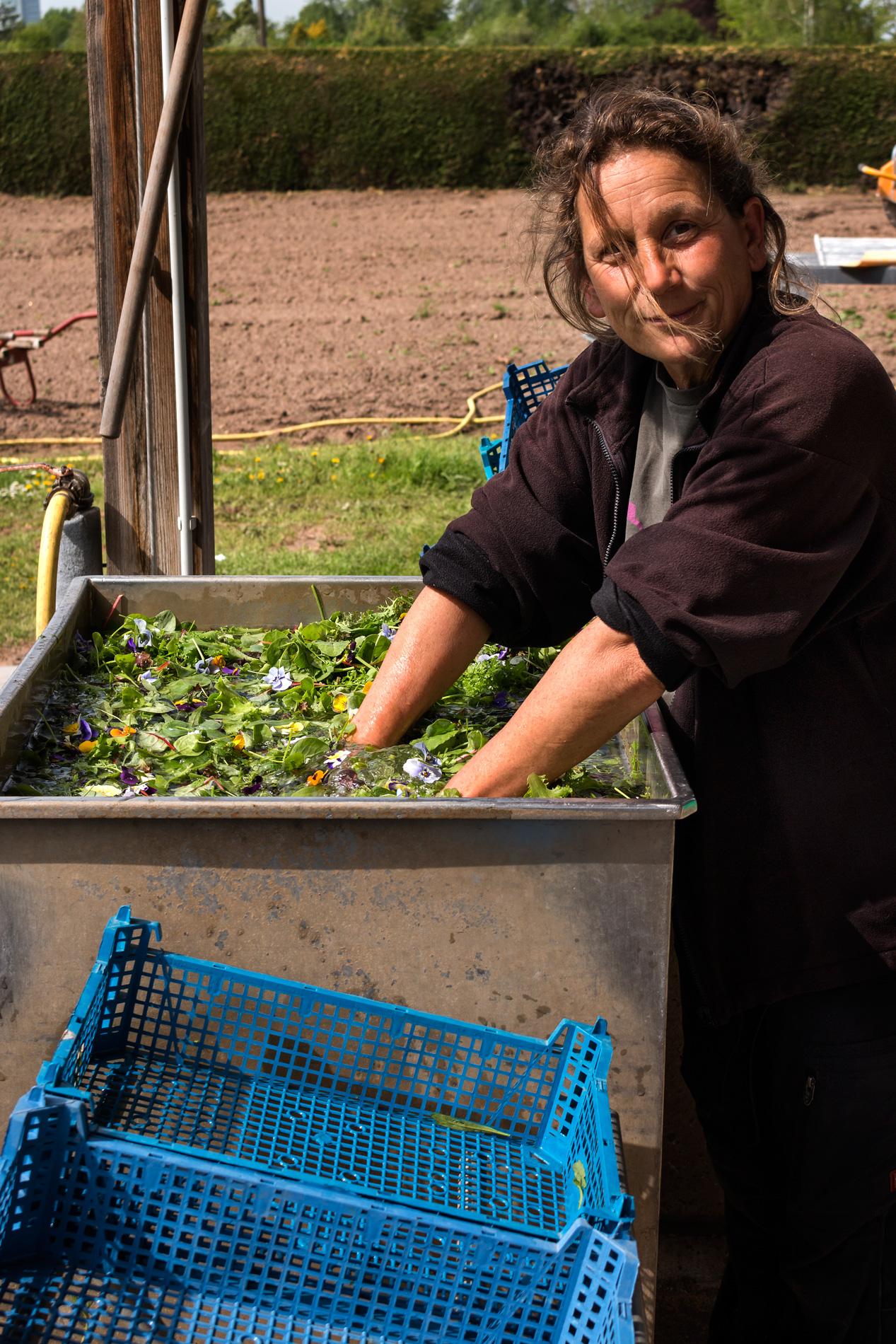 Ulrike wäscht Blütensalat