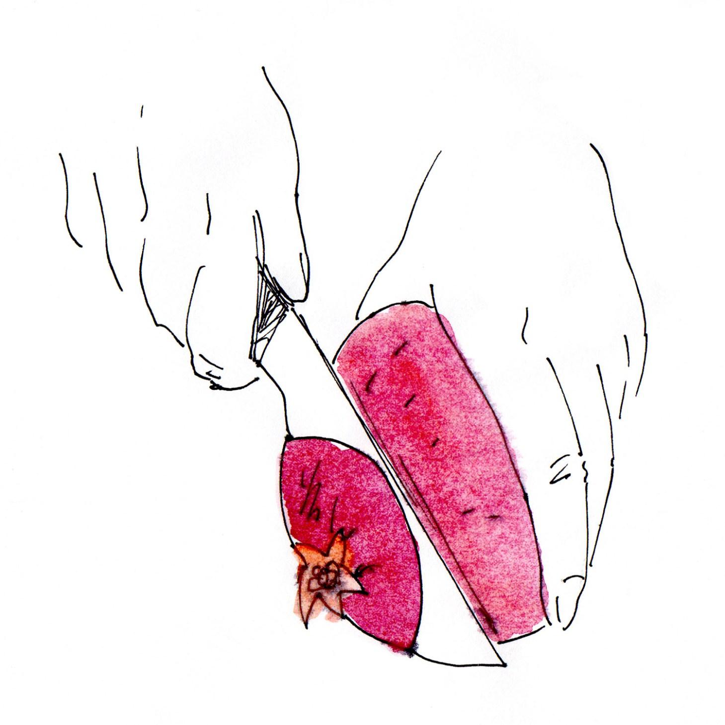 Granatapfel öffnen 1