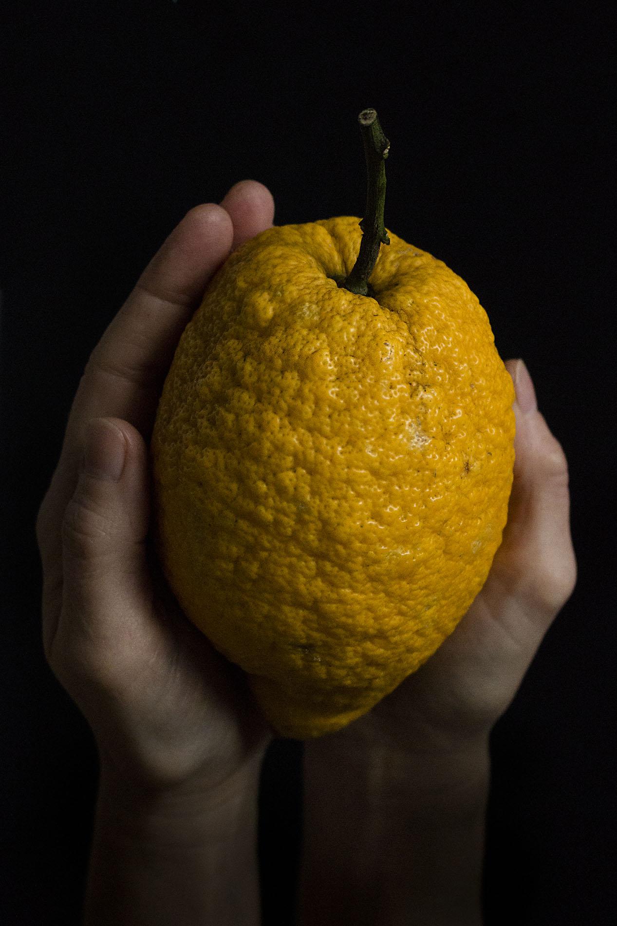 Sizilianiasche Zitrone