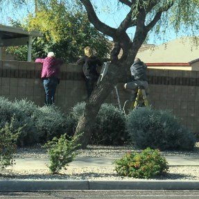 Sunday, April 12, 2020 – Grandparents watching their grandkids hunt for Easter eggs from a safe distance. #allthefeels. Chandler, AZ. Sarah Mastin Deats
