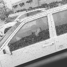 Thursday, April 30, 2020 – Sad that THIS is how I have to see my mom! Through a window. In the parking lot for contact-free pickup. But worth every step to make sure she and my dad are safe! Bethesda, Maryland. Jenny Mosier