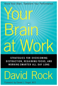 Your Brain at Work - book
