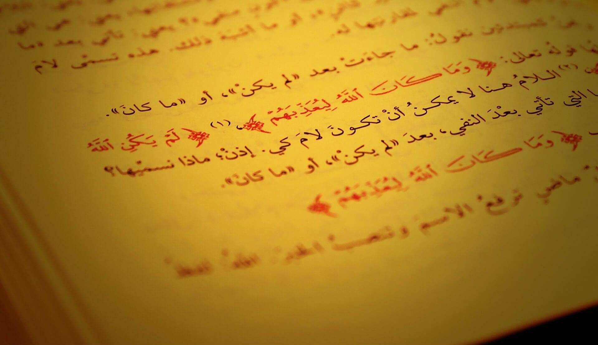Aulas de árabe com professores experientes