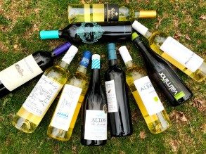 Spanish Albarino Wines
