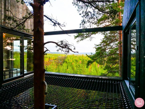 7th room treehotel, 7th room at Treehotel Sweden, designed by Snøhetta