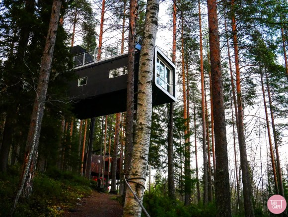 treehotel Sweden, Treehotel Sweden impresses through architecture and design