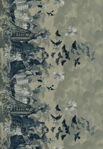 papillons  monochrom