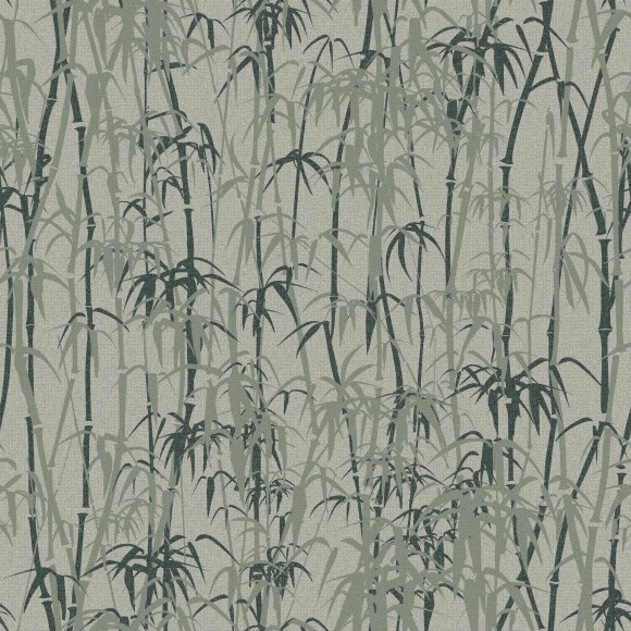 bamboo forest  green