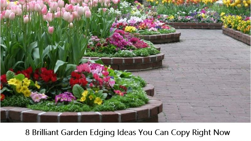 8 Brilliant Garden Edging Ideas You Can Copy Right Now