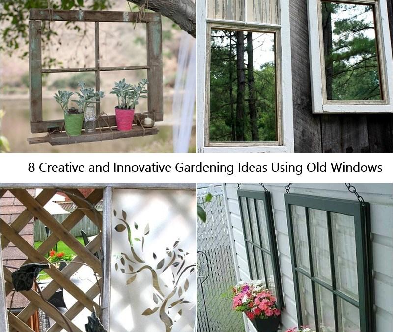 8 Creative and Innovative Gardening Ideas Using Old Windows
