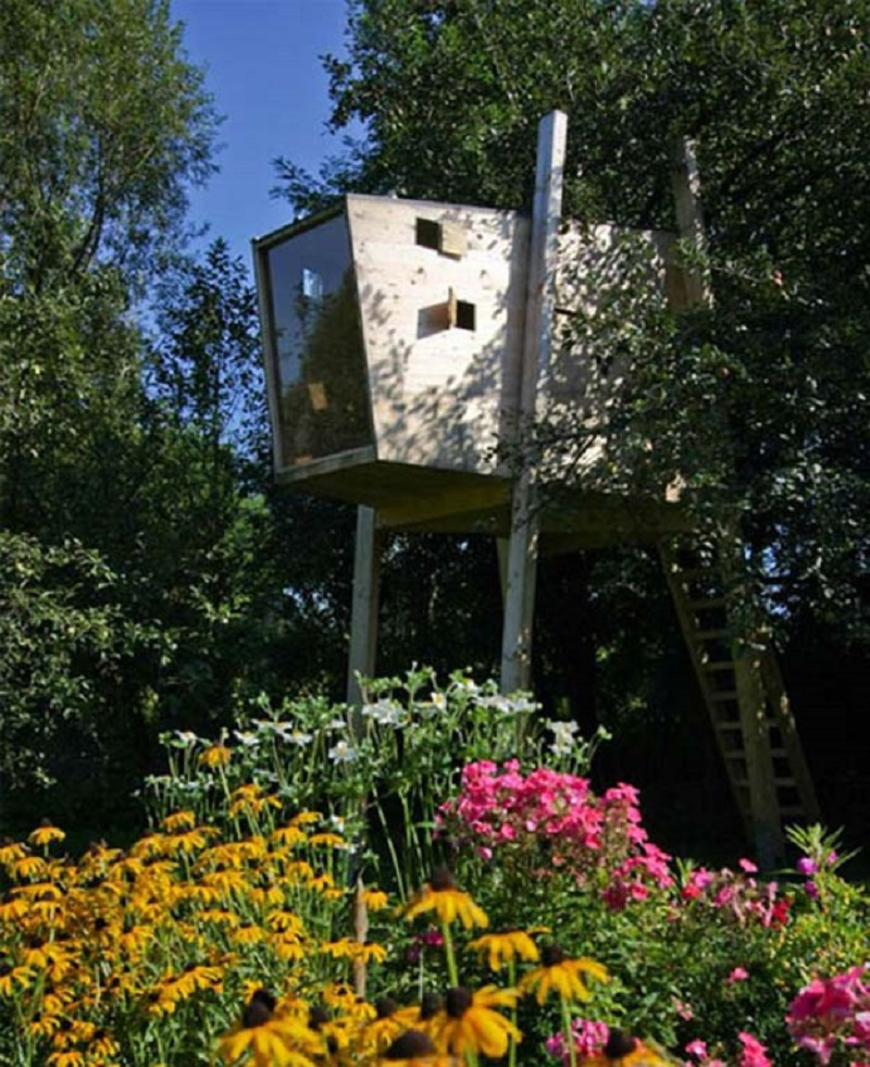 Box Treehouse