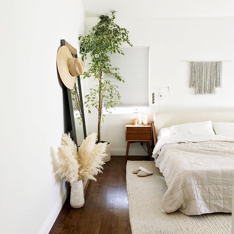 Pampas Grass At Bedroom