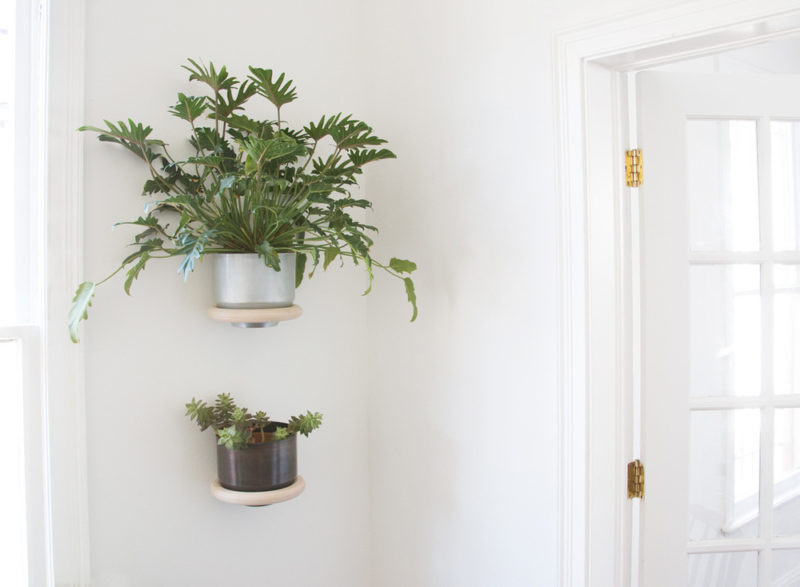Minimalist Wall Mounted Planter