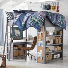 Fun Loft Bed Design