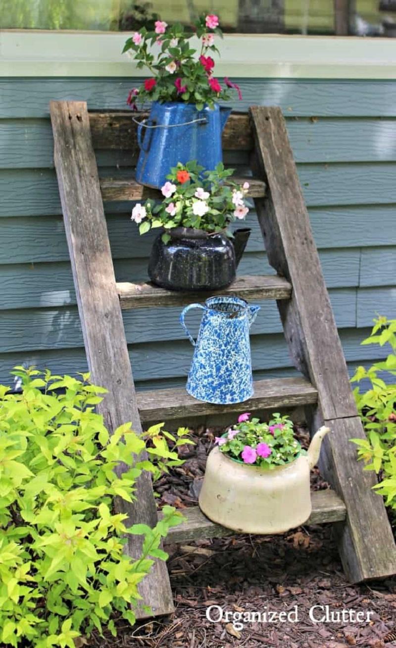 Garden With Old Ladder
