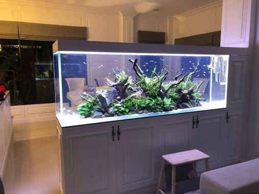 55 Wondrous Aquarium Design Ideas For Your Extraordinary Home Decoration Talkdecor