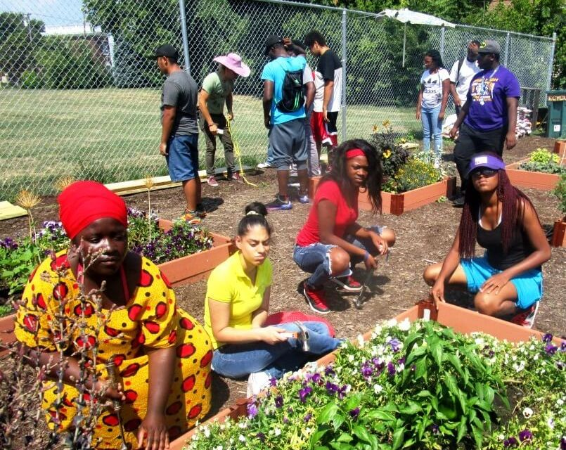 A gathering of students, educators, urban farmers and social entrepreneurs at the Bay Street  Community Garden