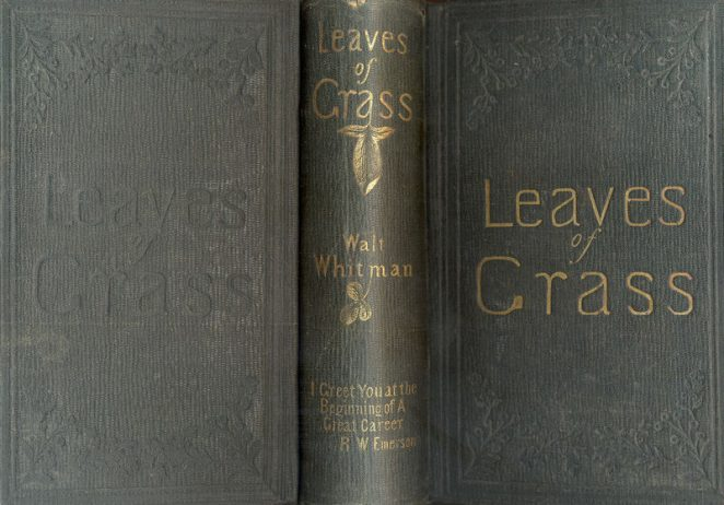 A shot of the 1856 edition of Walt Whitman's Leaves of Grass, with Emerson's blurb on the spine. Courtesy of the Drew University Library