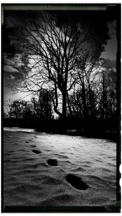 Modern day footprints cover the same trails that our ancestors did 10-15,000 years ago. From Trailblazers: Reflections from the Ancient Indian Trails of Western and Central New York