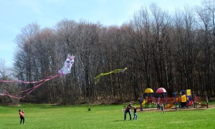 Spring cleaning and kite flying at Brighton Town Park