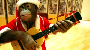 South Korea's Trainers and Animals Prepare For Christmas Performance