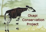 Okapi_Conservation_Project_Logo