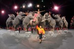 ringling+brothers