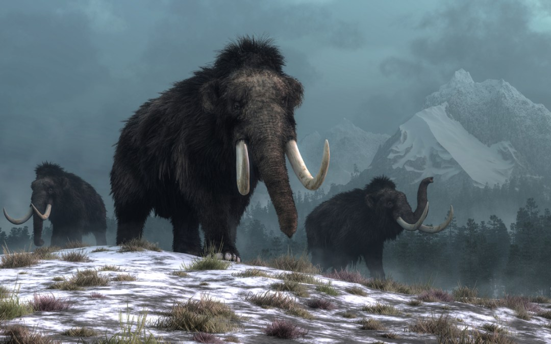 Britain's lost megafauna and the extinction factor
