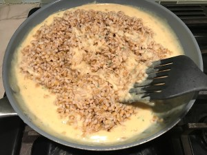 Spatula mixing cooked barley into cheese sauce in large frying pan for Velvety Barley Recipe with Bacon and Gruyere Cheese.  It's creamy, rich, nutty, smokey, hearty, and utterly delicious.
