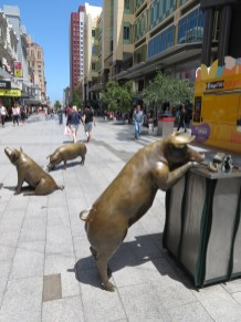 Rundle Street Pigs