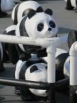 1600 Pandas+, Bangkok